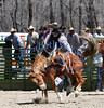 Teton High RODEO : 1 gallery with 130 photos